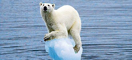 Reuters climate coverage is now controlled by a skeptic. (photo: Guardian UK)