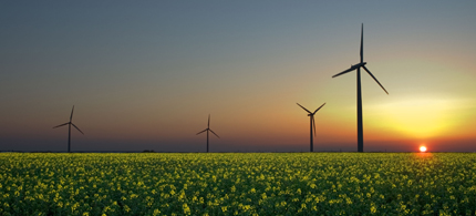 The wind, sun, and biomass are three renewable energy sources. (photo: WikiCommons)