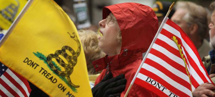 The Republican Party has fought off tea party challenges in 2014. (photo: AP)
