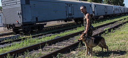A pro-Russia rebel guards a train containing the bodies of victims of the MH17 crash in Torez. (photo: Getty Images)