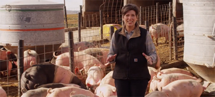 Senator Joni Ernst in a campaign ad. (photo: YouTube)
