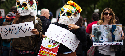 Protesters in Argentina march against Monsanto. (photo: Getty)