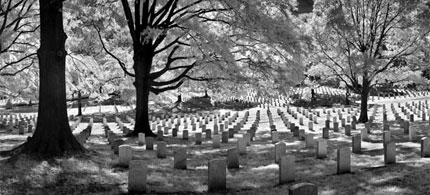 Graves of America's war dead at Arlington, 06/15/07. (photo: Bruce Dale/National Geographic)