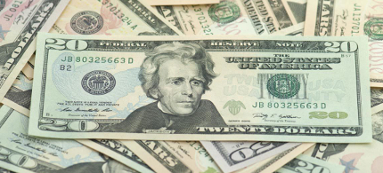 The image of Andrew Jackson on the US $20 bill. (photo: Politico)