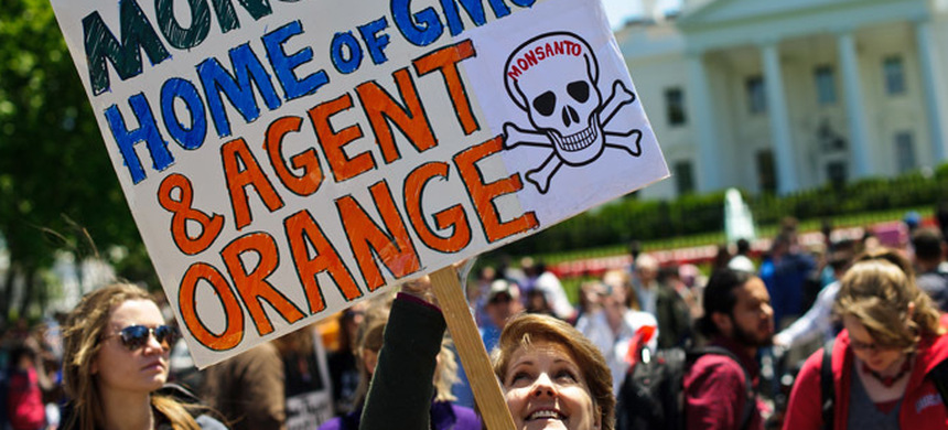 Protest against Monsanto at White House. (photo: Nicholas Kamm/AFP)