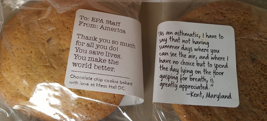 A couple of the cookies that landed inside Environmental Protection Agency headquarters this week. (photo: WP)