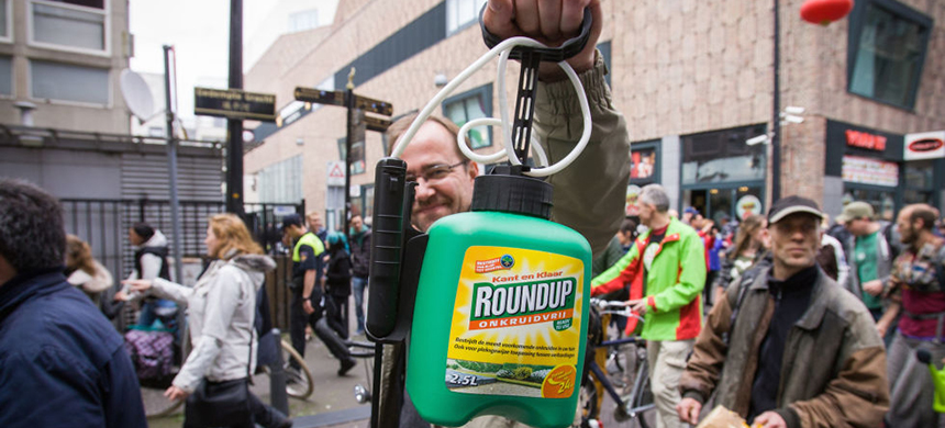 Roundup is made by Monsanto. photo: Getty Images