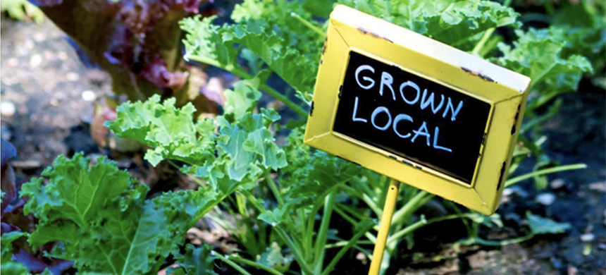 'Grown Local.' (photo: EcoWatch)