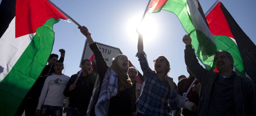 People rally to support Palestine. (photo: AP)