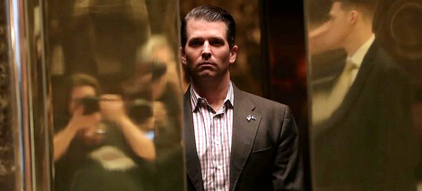 Donald Trump Jr. (photo: Getty Images)