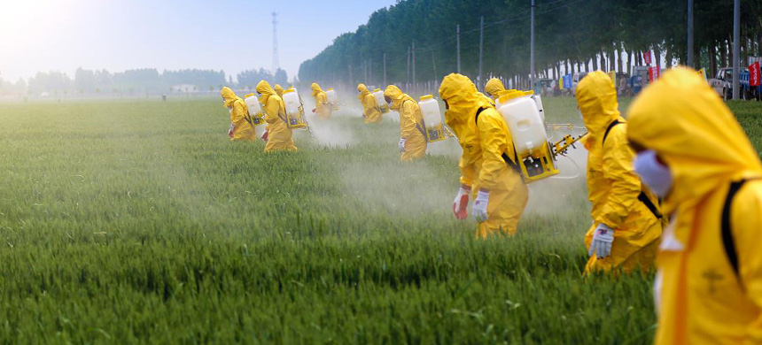 Workers apply pesticide. (photo: iStock)