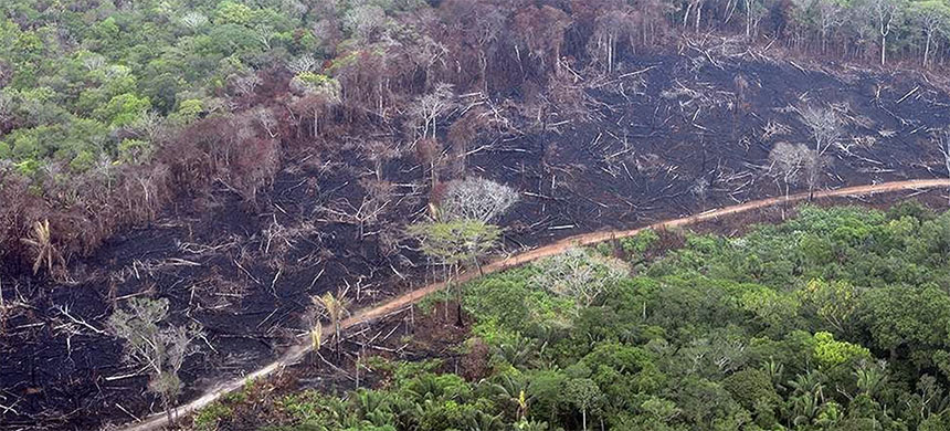 Deforestation in Colombia. (photo: Mongabay)