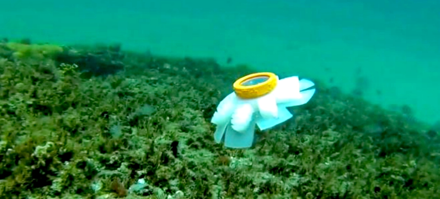 Scientists have developed a small robot that can move effortlessly along a coral reef without risking any damage. (photo: Bioinspiration & Biomimetics)