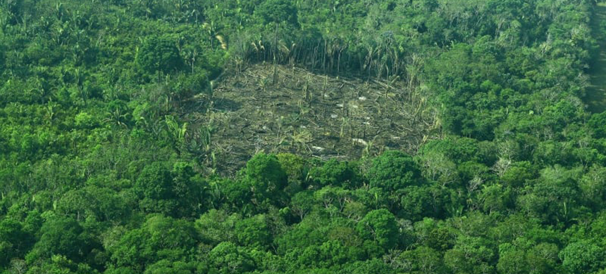 An aerial view of deforestation in Brazil's Amazon rainforest. (photo: AFP/Getty Images)