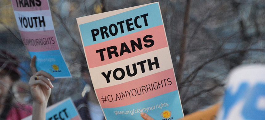 Demonstrators hold signs calling for protection for trans youth. (photo: GLSEN)