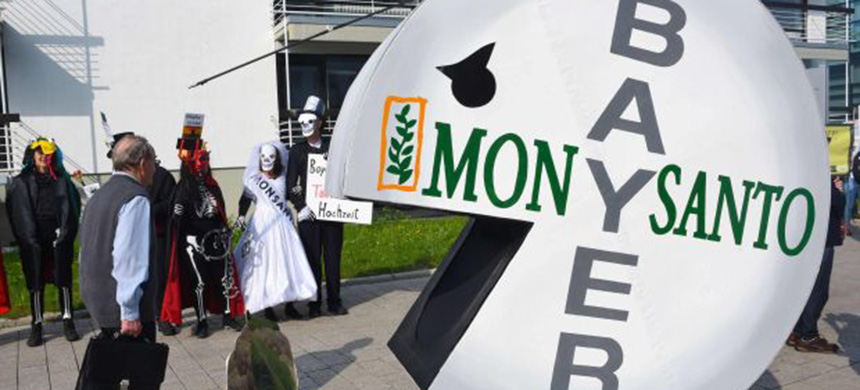 Protest against Bayer's Monsanto. (photo: WSJ)