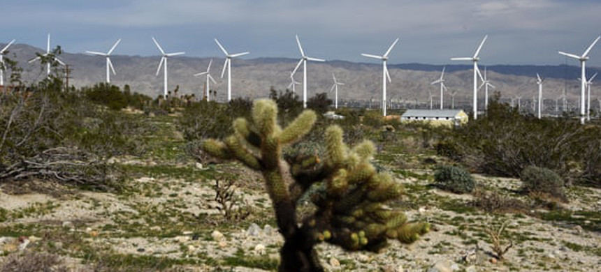The San Gorgonio wind farm near Rancho Mirage in California. The falling cost of renewables and gas causing coal to be dislodged as a favored energy source for utilities. (photo: Xinhau/Barcroft)