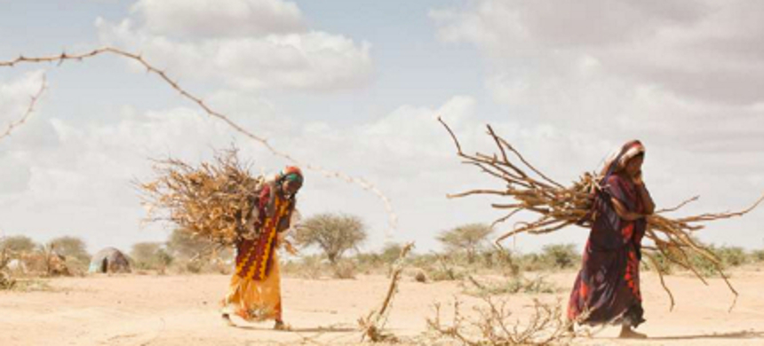 Even under the unrealistic 'best-case' scenario of 1.5C of warming by 2100, many millions of people will have to choose between starvation and migration. (photo: B. Bannon/UNHCR)