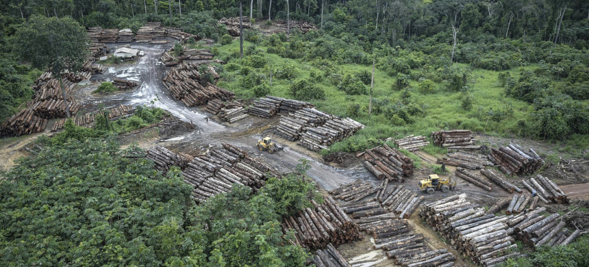 Amid an international outcry over Amazon deforestation, the Brazilian government has met to review the data collection system. (photo: Felipe Werneck/AP)