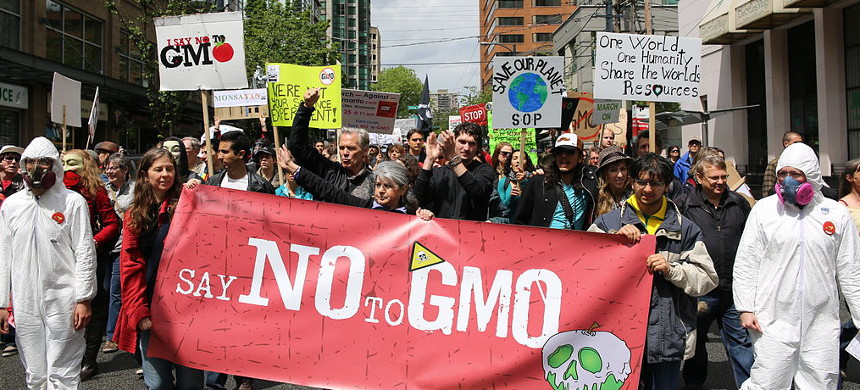 March against Monsanto in Vancouver, Canada, in 2013. (photo: Rosalee Yagihara)