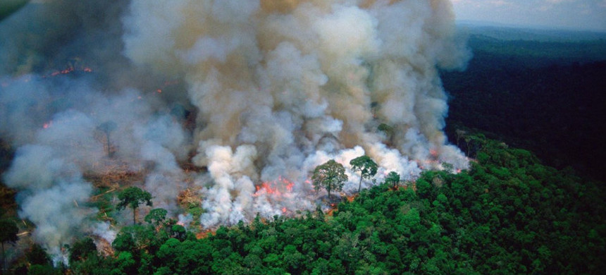 The Amazon rainforest is battling a record number of fires. (photo: Twitter)