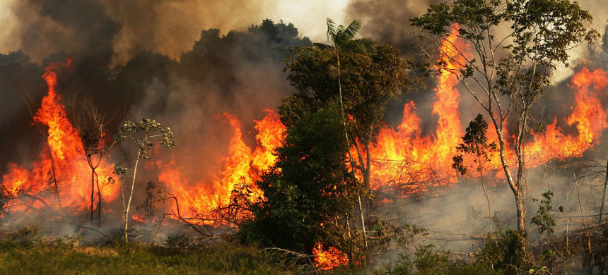A fire burns trees next to grazing land in the Amazon basin in Ze Doca, Brazil. (photo: Mario Tama/Getty)