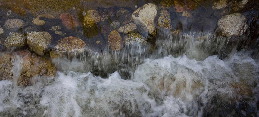 The Forest Service recently determined Nestlé's activities left California's Strawberry Creek 'impaired' while 'the current water extraction is drying up surface water resources.' (photo: Nick Todd/Alamy)