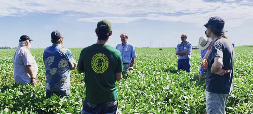 Farmers and farm guests partake in field walks and discussions at Willow Lake Farm Agroecology Summit in Windom Minnesota. (photo: Anna Claussen/Grist)