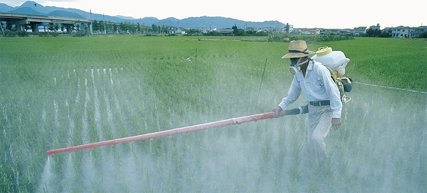 Spraying chemicals on rice crop in Japan. (photo: Stockbyte/Getty Images)