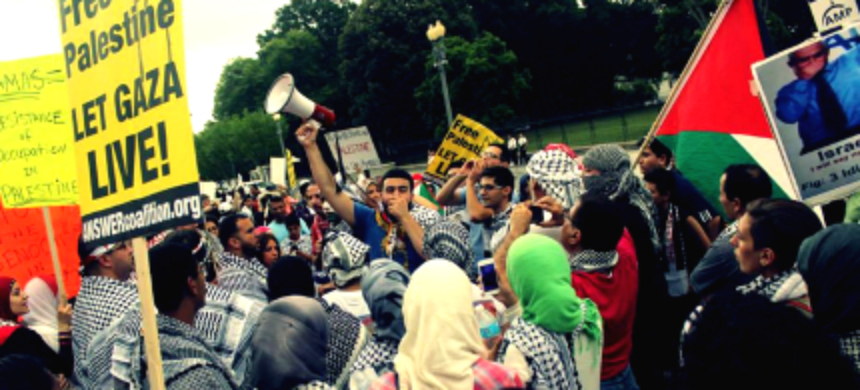 Protesters call for an end to Israel's violence in Palestine. (photo: Andrew Stefan/RSN)