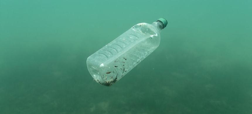 A plastic bottle. (photo: PBS)