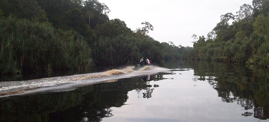 Berbak-Sembilang biosphere reserve in South Sumatra. (photo: UNESCO)