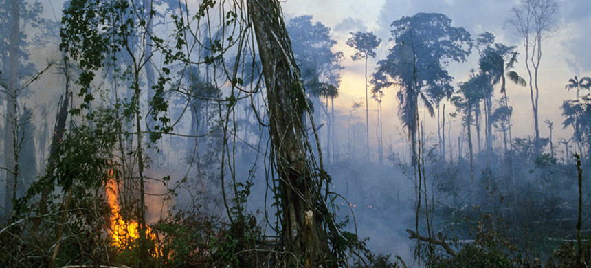 A fire in the Amazon rain forest. (photo: Getty)