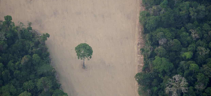An aerial view of a deforested plot in the Amazon, near Porto Velho in Rondônia state, Brazil. (photo: Ueslei Marcelino/Reuters)