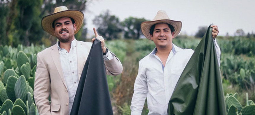 Two entrepreneurs from Mexico have created sustainable cactus leather. (photo: Desserto)