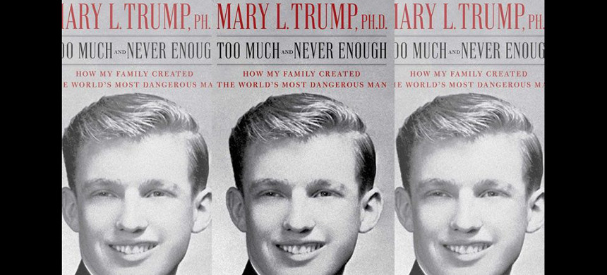 Donald Trump is trying to sue to stop the publican of his niece, Mary Trump, from publishing a tell-all book about him. (photo: Getty)