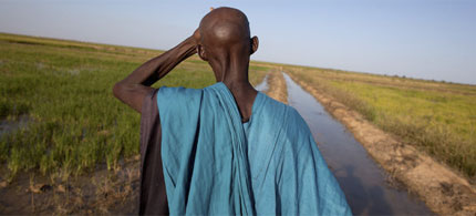 In Beldenadji, Mali, a canal has been extended to irrigate land, part of an American aid initiative. (photo: Tyler Hicks/NYT)