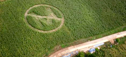 A crop circle made by local farmers and Greenpeace volunteers in a maize field in Isabela Province, Philippines, protests Monsanto's GM crops, 09/30/06. (photo: Melvyn Calderon/Greenpeace)