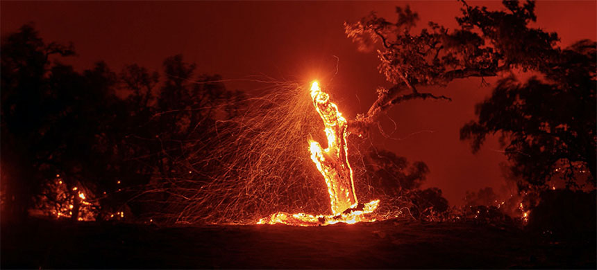 The Hennessey fire in Napa County. (photo: Josh Edelson/AFP/Getty Images)