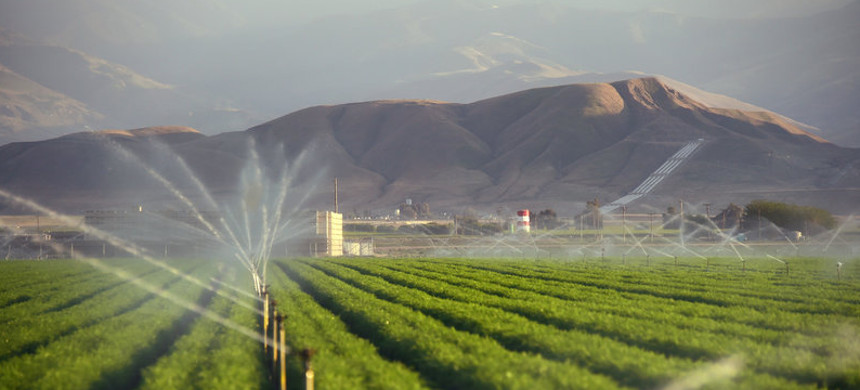 Fields of carrots are watered March 29, 2015, in Kern County, Calif. (photo: Frederic J. Brown/Getty)