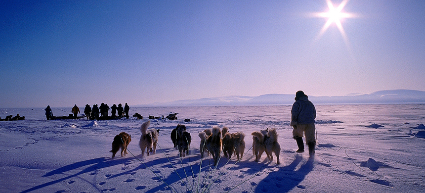 Dog sledding. (photo: Arctic/Getty Images)
