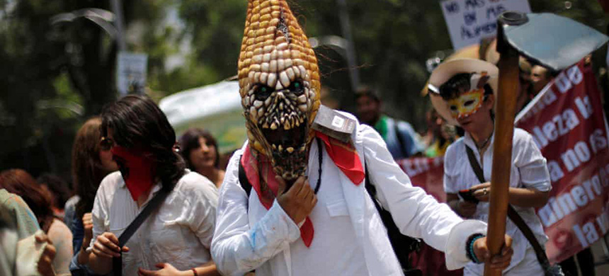 A protester wears a mask in the shape of corn, during a march against Monsanto in Mexico City. (photo: Stringer Mexico/Reuters)