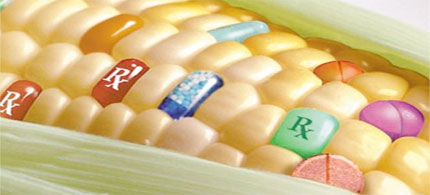 Monsanto receives taxpayer money from the US State Department to push GMO's. (photo: wordpress)