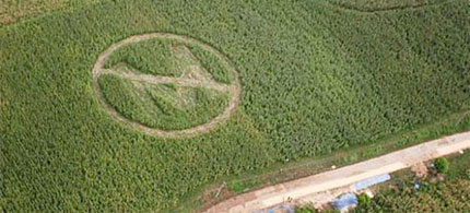 Anti-Monsanto crop circle. (photo: file)