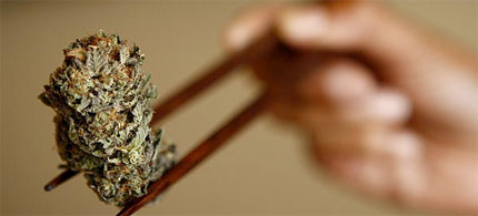 A marijuana bud for medical use displayed in a California dispensary, 10/20/09. (photo: Genaro Molina/LA Times)