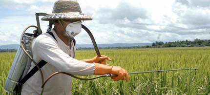 Farmer spraying his crops. (photo: Pesticide Action Network)