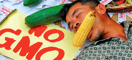 A Thai organic farmer pretends to be dead after eating GM corn during a protest against the introduction of genetically modified organisms (GMOs) to Thailand outside the Government House in Bangkok in 2004. (photo: Food Freedom)