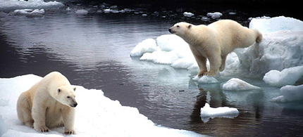 Despite the mounting evidence, some still deny climate change. (photo: Getty Images)