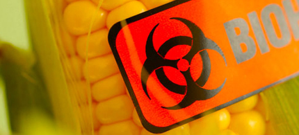 Monsanto doesn't want you to know it has tinkered with your food. (photo: Food Watch)
