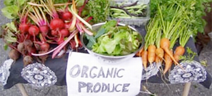 Organic foods are natures healthy alternative. (photo: Kid's Life)